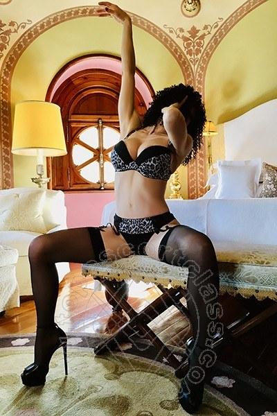 Angelica Faliero Italiana  BOLOGNA 3928076020